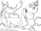 Coloring pages hunting dog