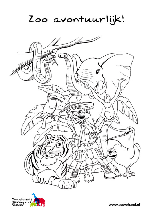 Coloring page in the zoo