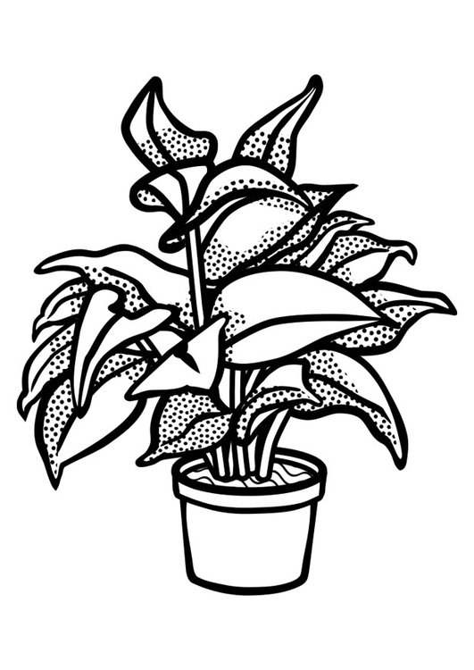Coloring page indoor plant