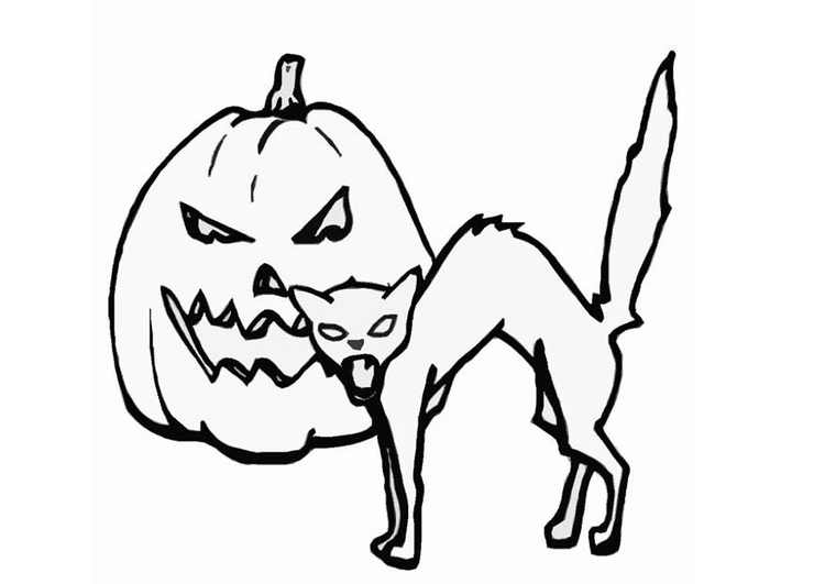 Coloring page jack-o-lantern and cat - img 8588.