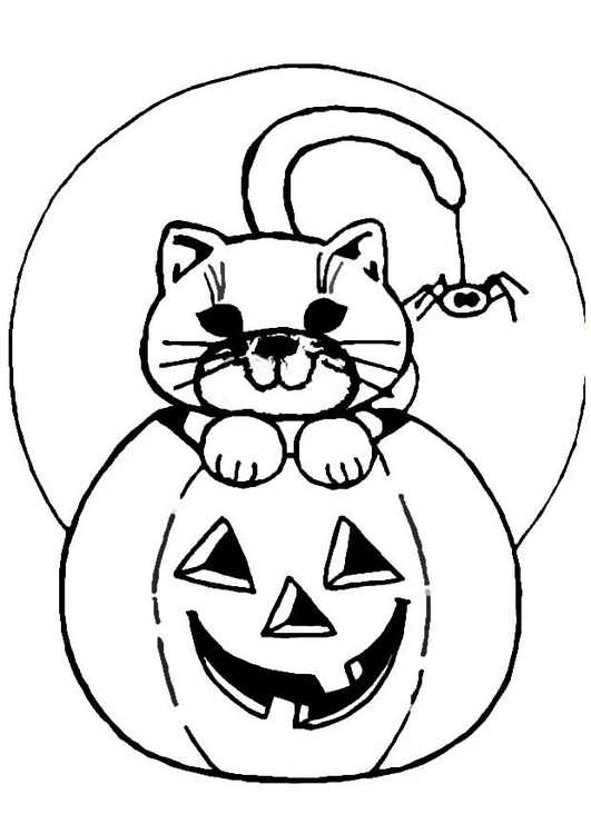 Coloring page jack-o-lantern and cat