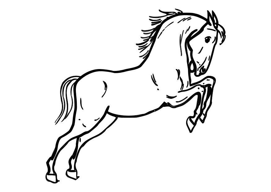 horses coloring pages. Coloring page jumping horse