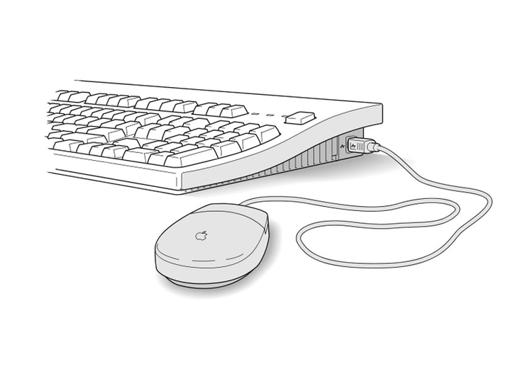 Coloring page keyboard and mouse