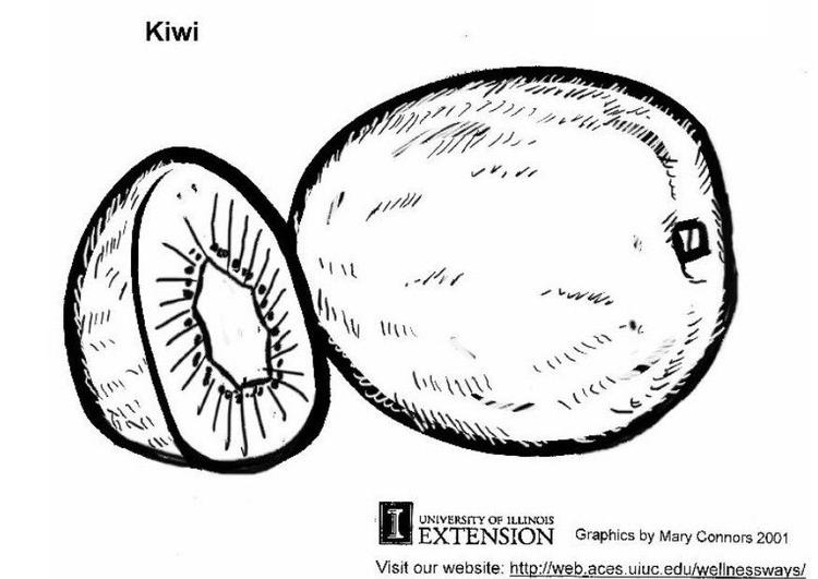 Kleurplaat Fruit Kiwi Coloring Page Kiwi Img 5813