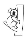 Coloring page Koala Bear