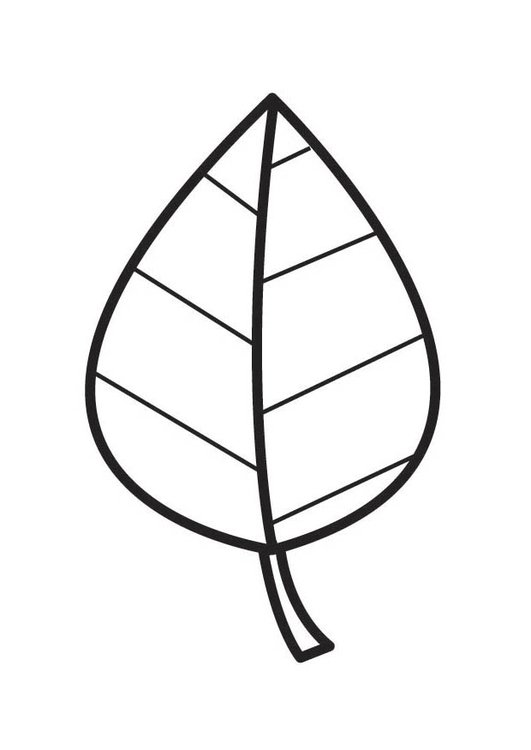 Coloring page Leaf
