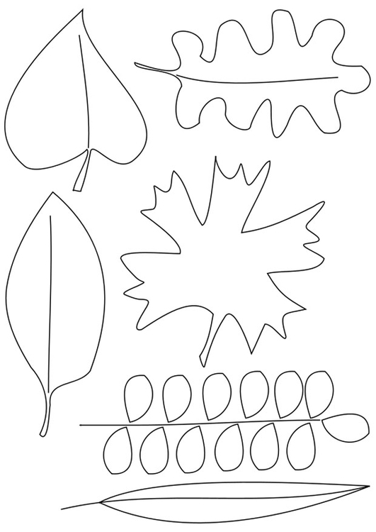 Coloring page leaves
