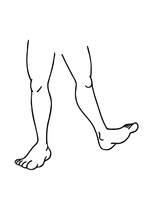 Coloring page legs