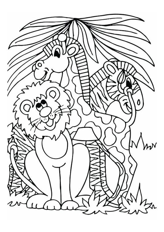 lion, giraffe and zebra