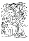 Coloring pages lion, giraffe and zebra