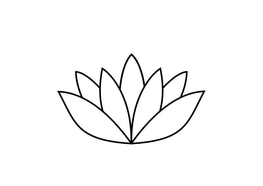 Coloring page lotus flower img 10467