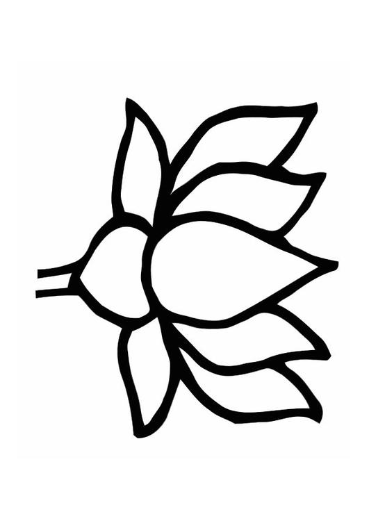 Coloring page lotus flower img 11276