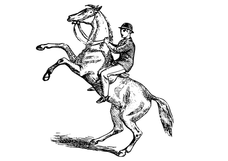 Coloring page man on horse