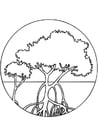 Coloring page mangroves