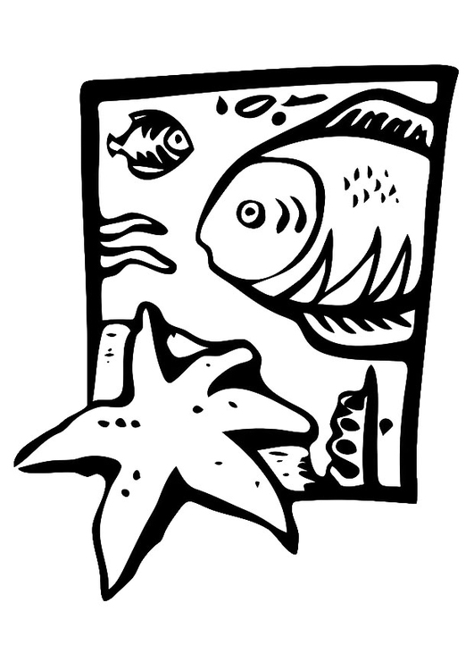 Coloring page marine animals