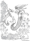 Coloring pages mermaid and seahorse
