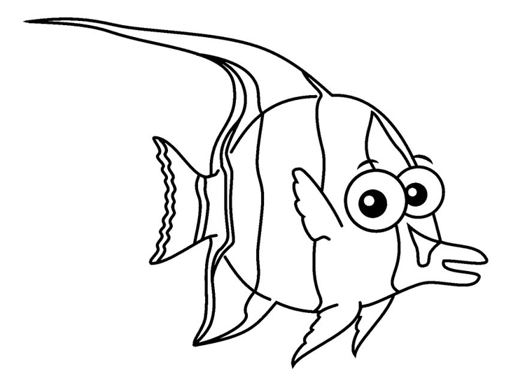 Coloring page moorish idol