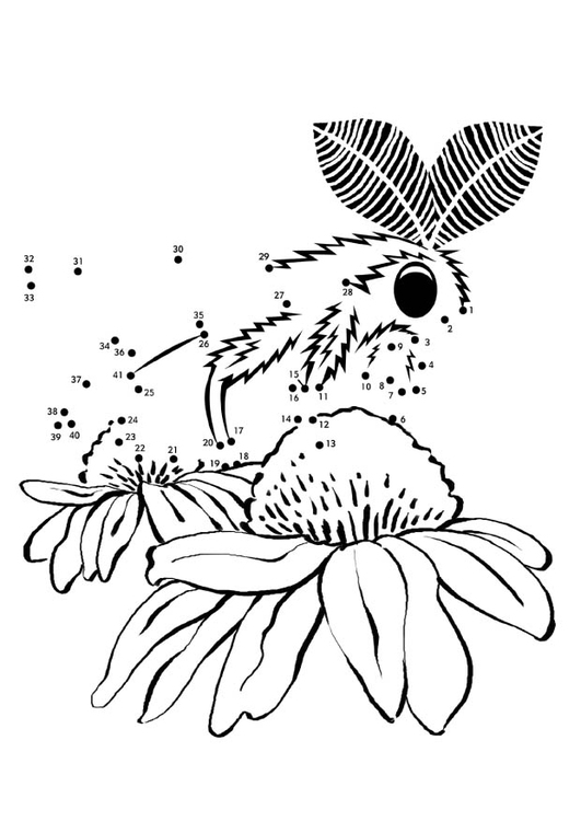 Coloring page moth