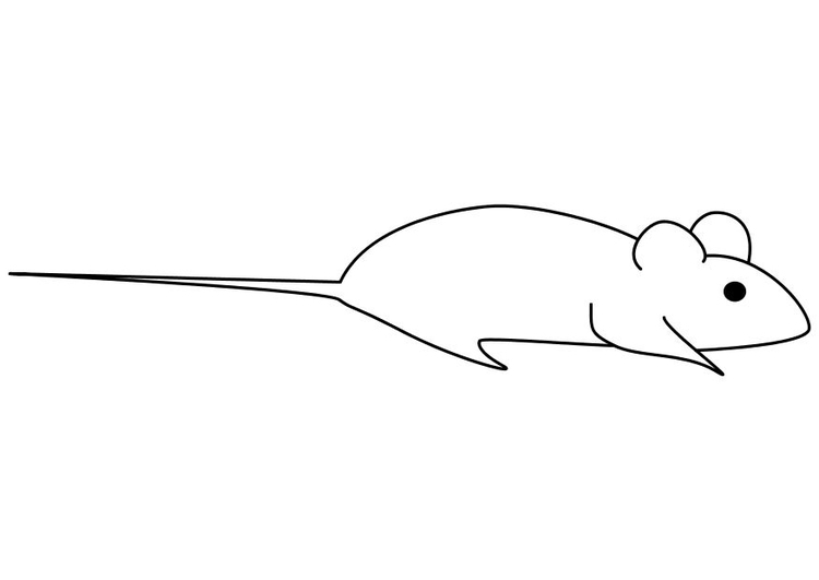 Coloring page mouse - img 10250.
