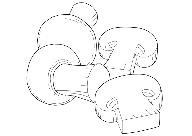 Coloring page mushrooms