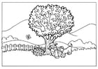 Coloring page nature