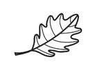Coloring page Oak Leaf