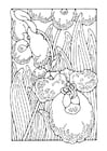 Coloring pages orchid