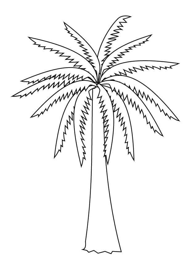 Пальма рисунок раскраска