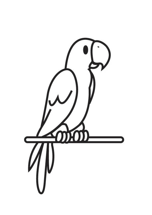 Coloring page Parrot