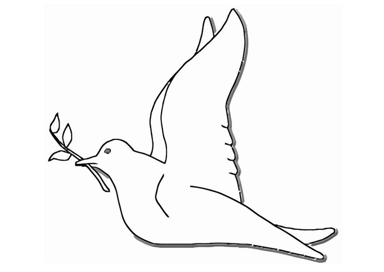 Coloring page peace dove