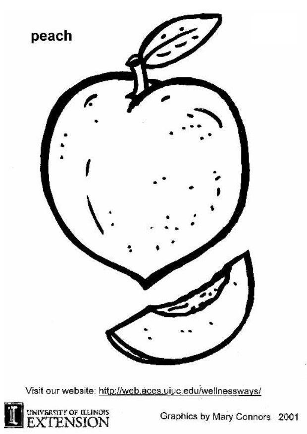 Kleurplaat Fruit Perzik Coloring Page Peach Img 5878