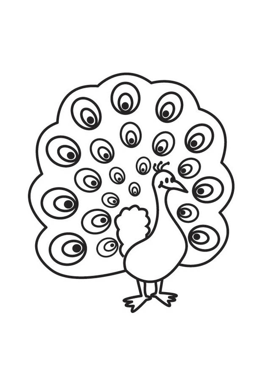 Coloring page Peacock