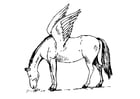 Coloring pages Pegasus