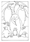 Coloring page Penguin