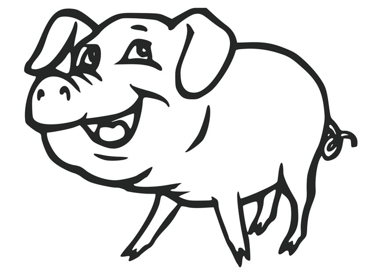 Coloring page pig - img 17077.