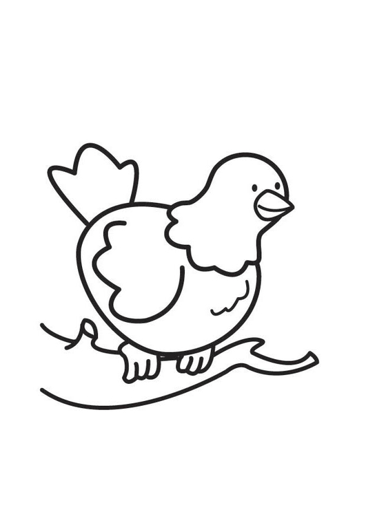 Coloring page Pigeon