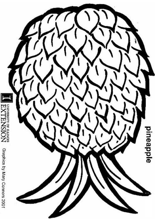 Coloring page pineapple - img 5883.