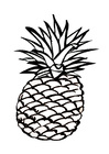 Coloring pages pineapple