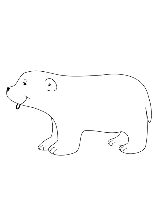 Coloring page polar bear
