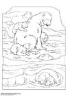 Coloring page polar bear