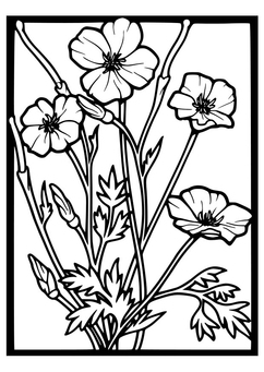 Coloring page Poppies