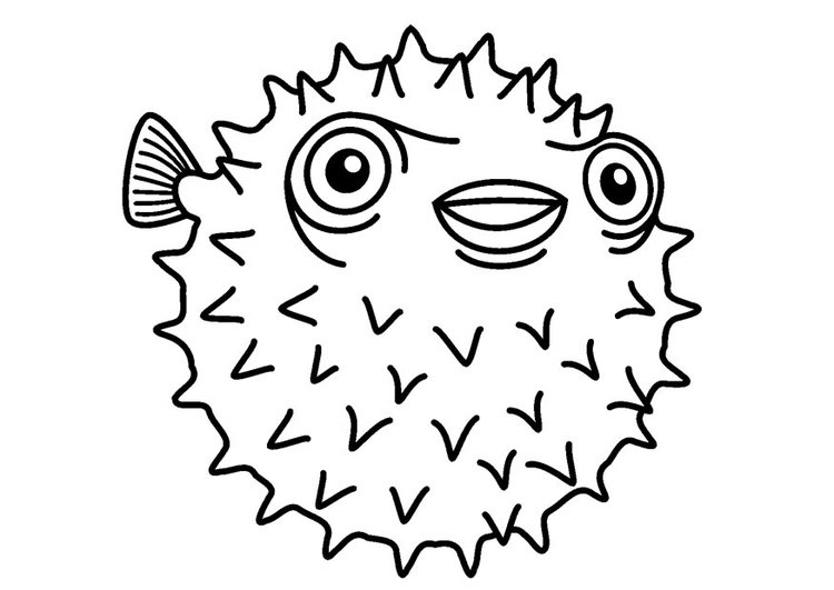 Coloring page porcupinefish