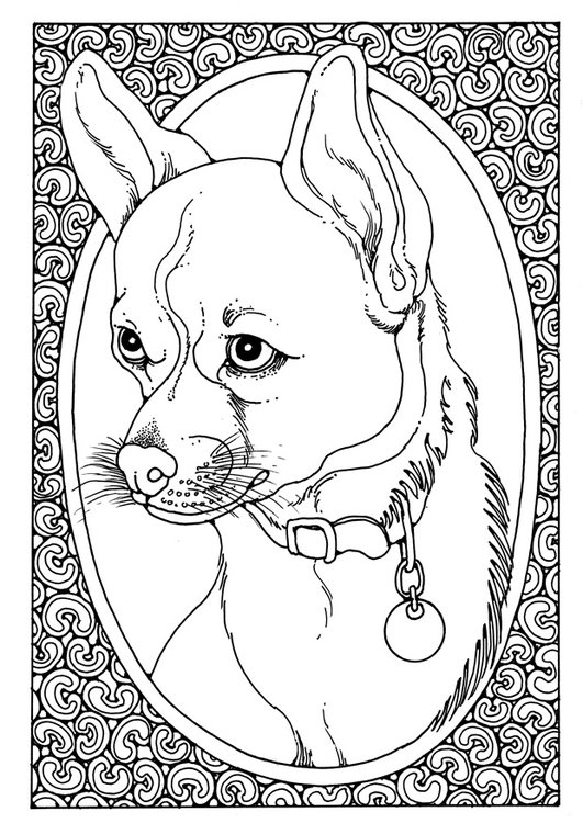 Coloring page portrait of dog