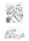 Coloring page predators
