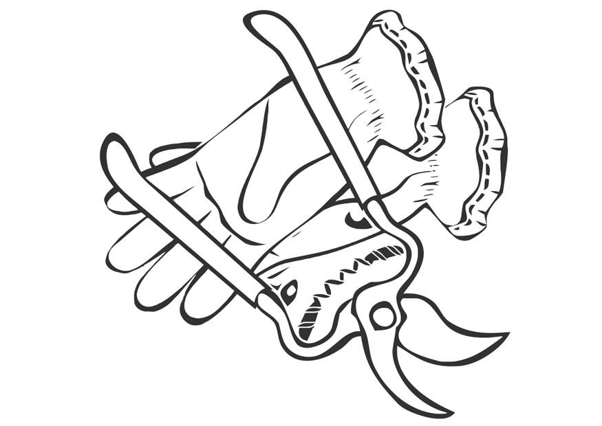 Coloring page pruning shears and gardening gloves , img