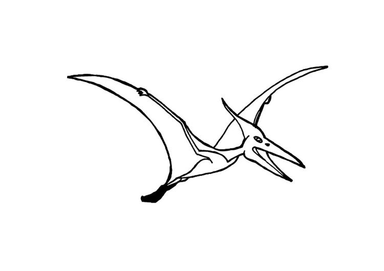 Coloring page pterosaurus