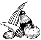 Coloring pages pumpkins