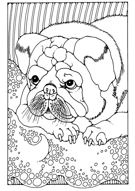 Coloring page puppy