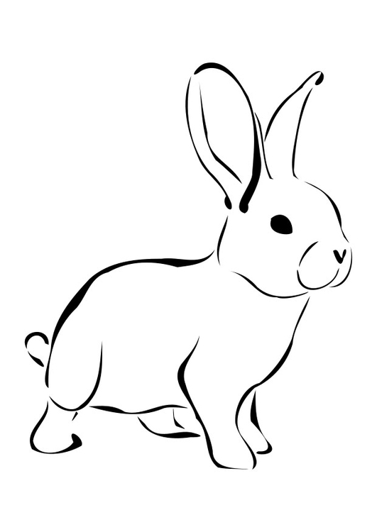 Coloring Page Rabbit Img 27276