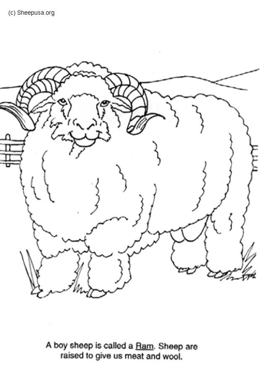 Coloring page ram